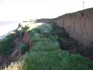 The cliffs at Aldbrough.