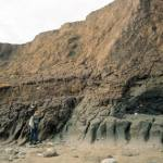 Coastal erosion of the lower part of the cliff at Aldbrough.