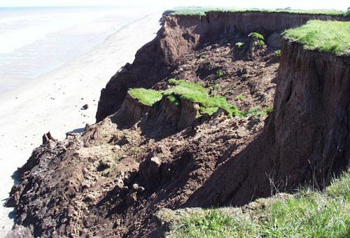 A well-developed rotational landslide at Aldbrough.