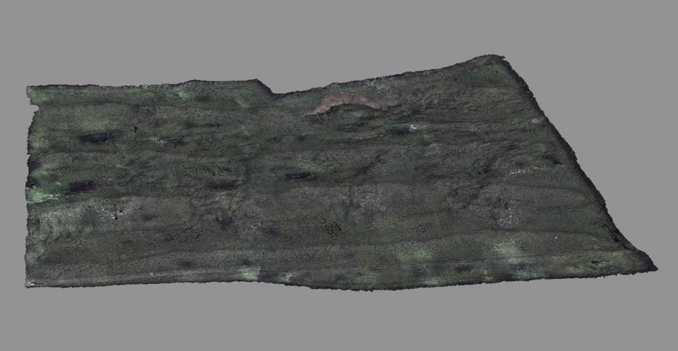 Hollin Hill digital terrain model