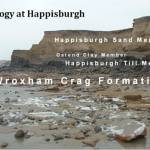Figure 3 The geology of the cliffs at Happisburgh.