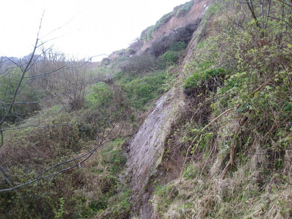 Photograph of rear scarp exposing grey glacial till. Photo taken looking west from slope below eastern end of Knipe Point. Note bungalows in top left of photograph.