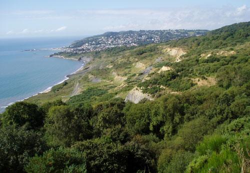 Black Ven landslide, including The Spittles, between Charmouth and Lyme Regis taken in 2005.
