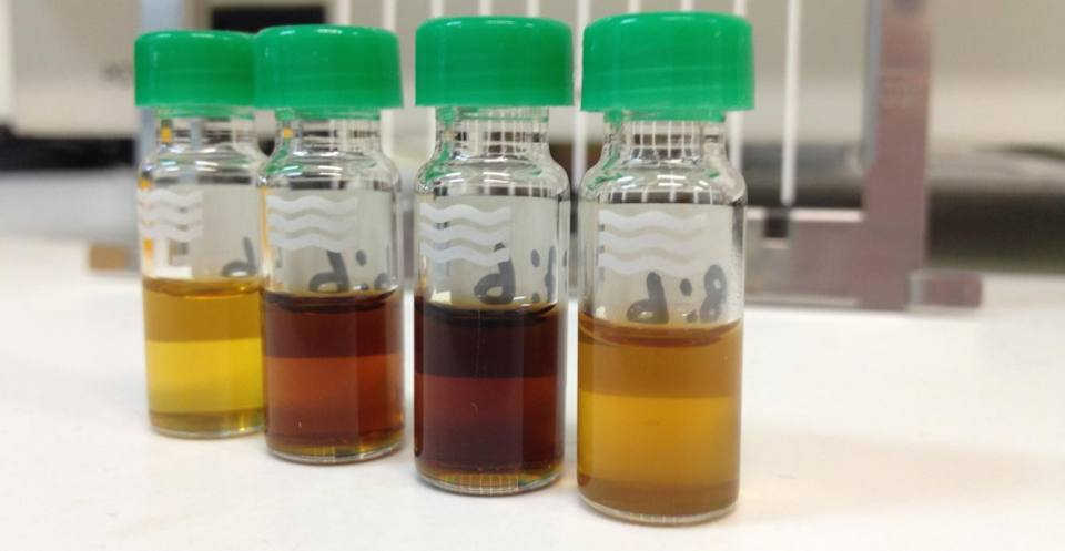Organic_geochem_solvent_extracts