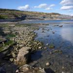 Jurassic coast limestone pavement and mudstone cliffs between Lyme Regis and Charmouth, Dorset.