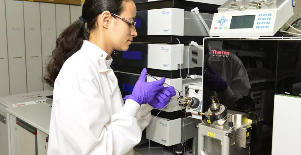 organic_geochemistry_fluid_chromatography
