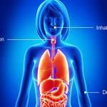 Bioaccessibility ©iStock.com/pixologicstudio