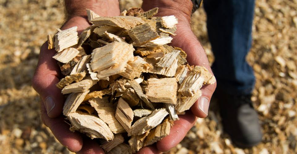 Biomass fuel includes wood, and agricultural and food processing wastes, as well as sewage sludge and animal manure.