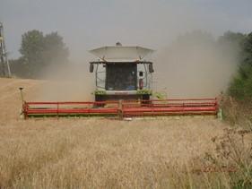 Harvesting on arable land