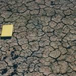 Mud cracks in Lambeth Group