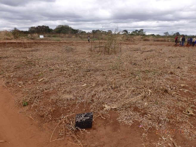 Sustainable soils in Africa
