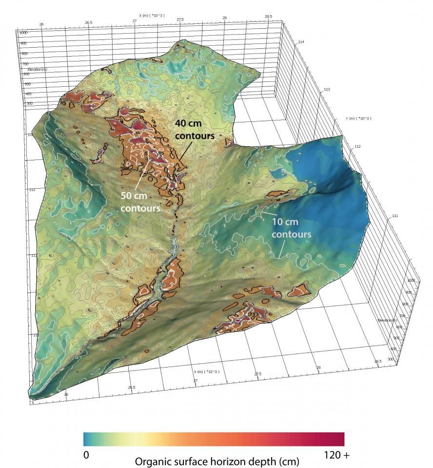 An organic soil depth map