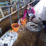 Sampling groundwater