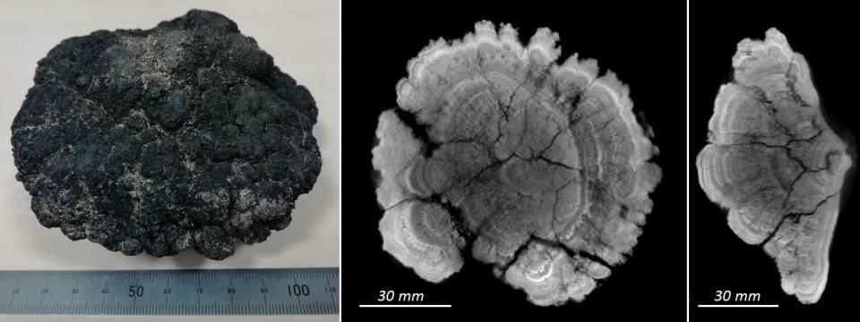 3D CT scan of a ferromanganese nodule