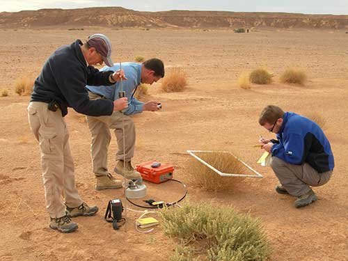 measurement of of soil gas, flux and botanical observations