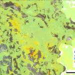 A map showing InSAR average velocities in Hanoi between 2016 and 2019 along the line of sight direction.