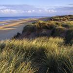 A view across the Marram and Sea-lyme sand dunes at Formby Point towards the shore line where the sea laps gently on the yellow sandy beach. Photograph © National Trust