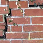 Crack in a wall due to subsidence