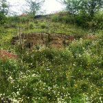 Howell Quarry