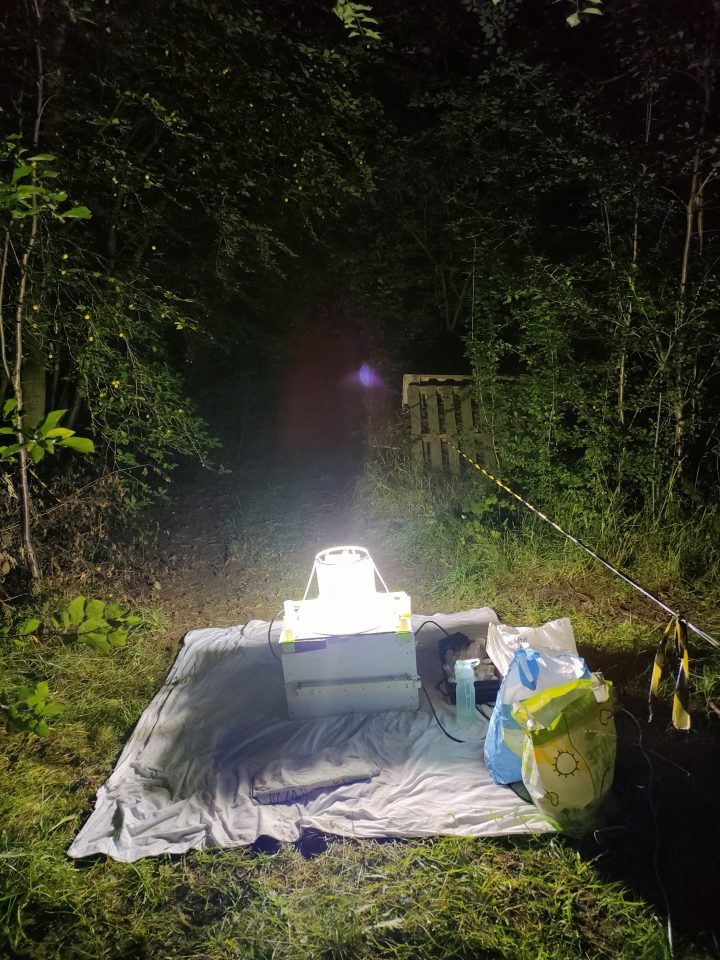 Moth trapping at the BGS Keyworth site